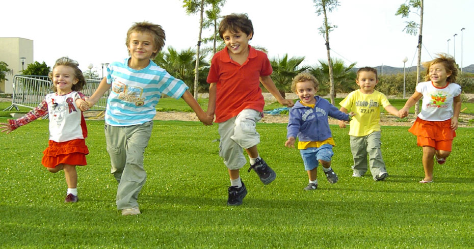 Leading Lawns for Play and Recreational Facilities