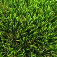 Finesse Deluxe Turf