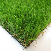 Finesse grass